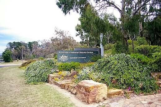 australian_national_botanic_gardens-turrehberin