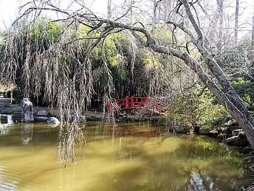 birmingham_botanical_gardens-turrehberin