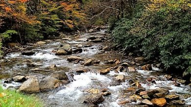 Photo of Great Smoky Mountains