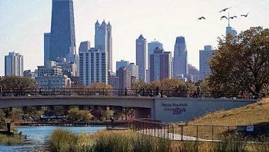 Photo of Lincoln Park ve Hayvanat Bahçesi