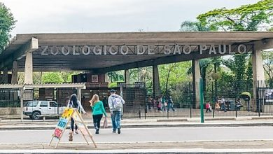 Photo of Parque Zoologica