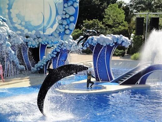 Whale_&_Dolphin_Theater_(Seaworld_Orlando)