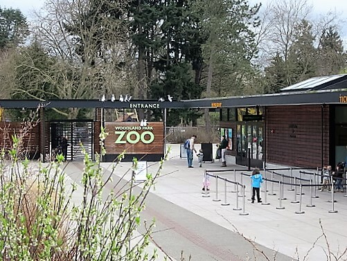 woodland_park_zoo-turrehberin