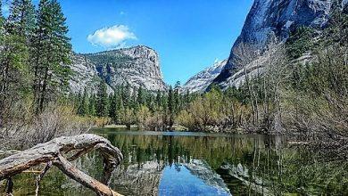 Photo of Yosemite Milli Parkı
