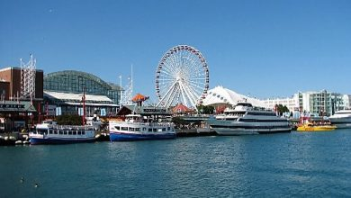 Photo of Chicago Navy Pier