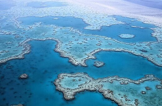 great-barrier-reef-turrehberin