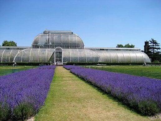 kew-gardens-turrehberin