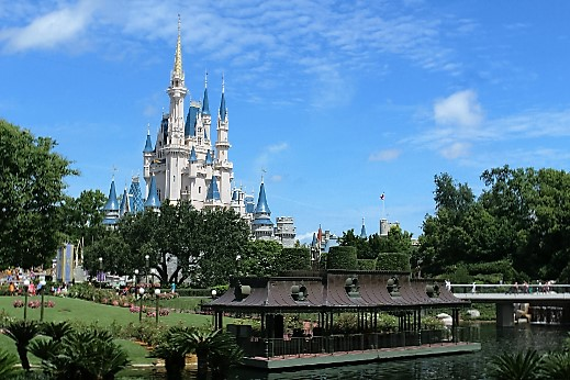 walt-disney-world-turrehberin
