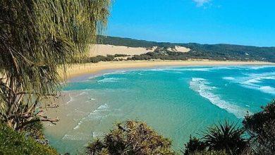 Photo of Fraser Island