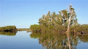 Kakadu Milli Parkı