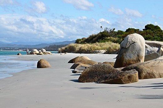tasmania-turrehberin