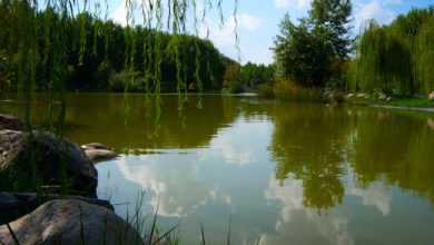 Photo of Bursa Botanik Parkı