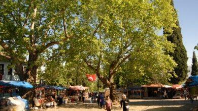 Photo of Cumalıkızık