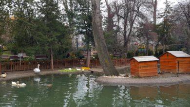 Photo of Kuğulu Park